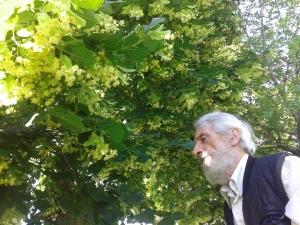 Драган Симовић: БОГИЈЕВО ЗВЕЗДАНО ПУТОВАЊЕ КА ДОМУ СВОМЕ У СВЕТЛОСТИ