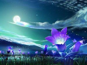 3-990098__mystical-moon_p