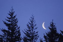 250px-Jeff_Fennell_-_Early_Morning_Moon_(by).jpg