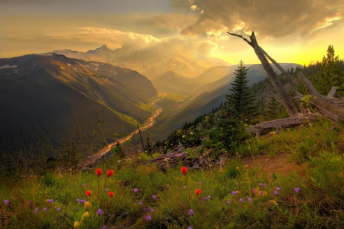Nature-Photography-Russia